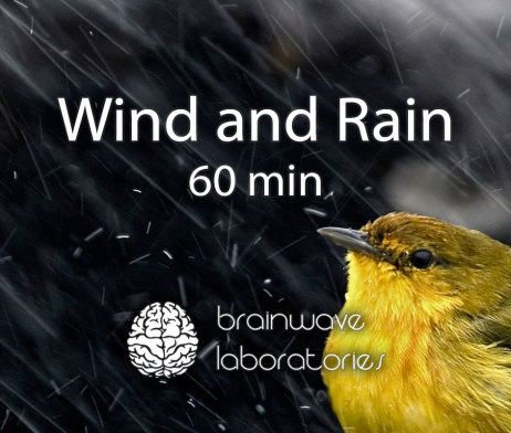 Wind-and-Rain-60min-Featured