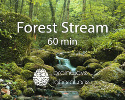 Forest-Stream-60min-Featured