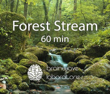 Forest-Stream-60min-Featured