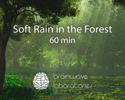 Soft-Rain-in-the-Forest-60min-Featured